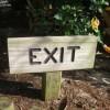 Exit, czyli cytryna i kapusta