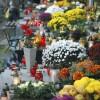 Symbolika kwiatów pogrzebowych. Jakie wybrać?
