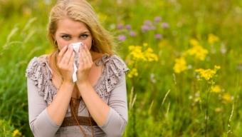 Jak zanieczyszczenie powietrza wpływa na katar sienny?